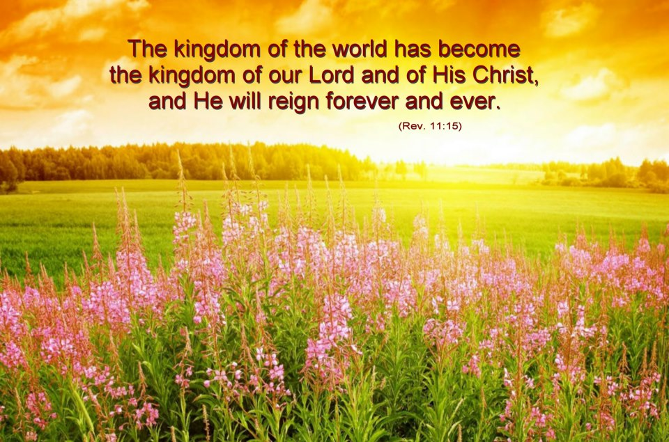 Scripture for the Day: Looking Towards God's Kingdom ...