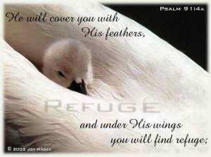 psalm-91_4