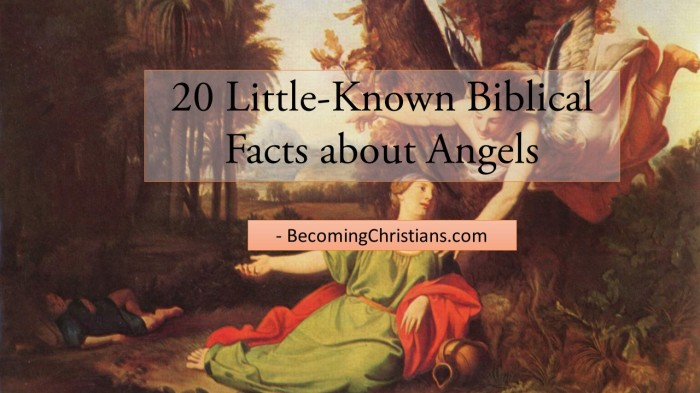 20 Little-Known Biblical Facts about Angels