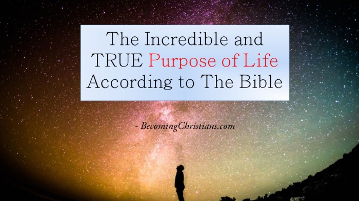 The Incredible and TRUE Purpose of Life According to The Bible