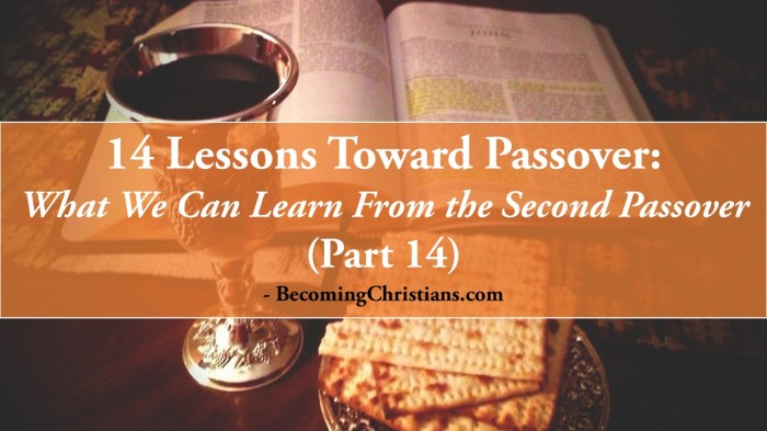 14 Lessons Toward Passover: What We can Learn from the Second Passover (Part 14)