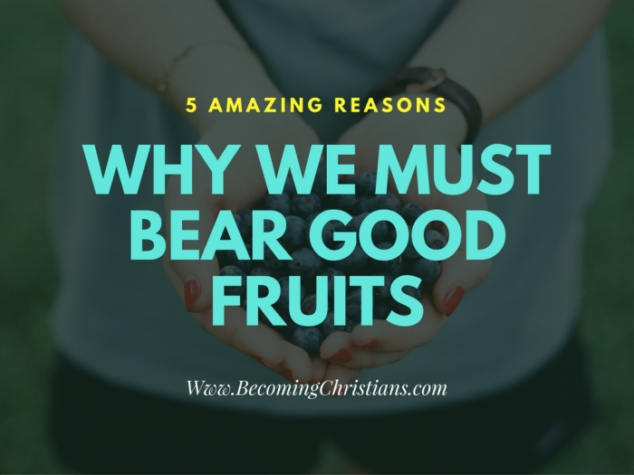 5 amazing reasons Christians Should Bear Good Fruits