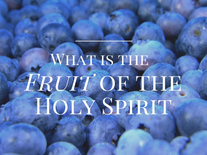 What is the Fruit of the Holy Spirit?