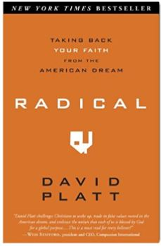 Radical Taking Back Your Faith from the American Dream.JPG