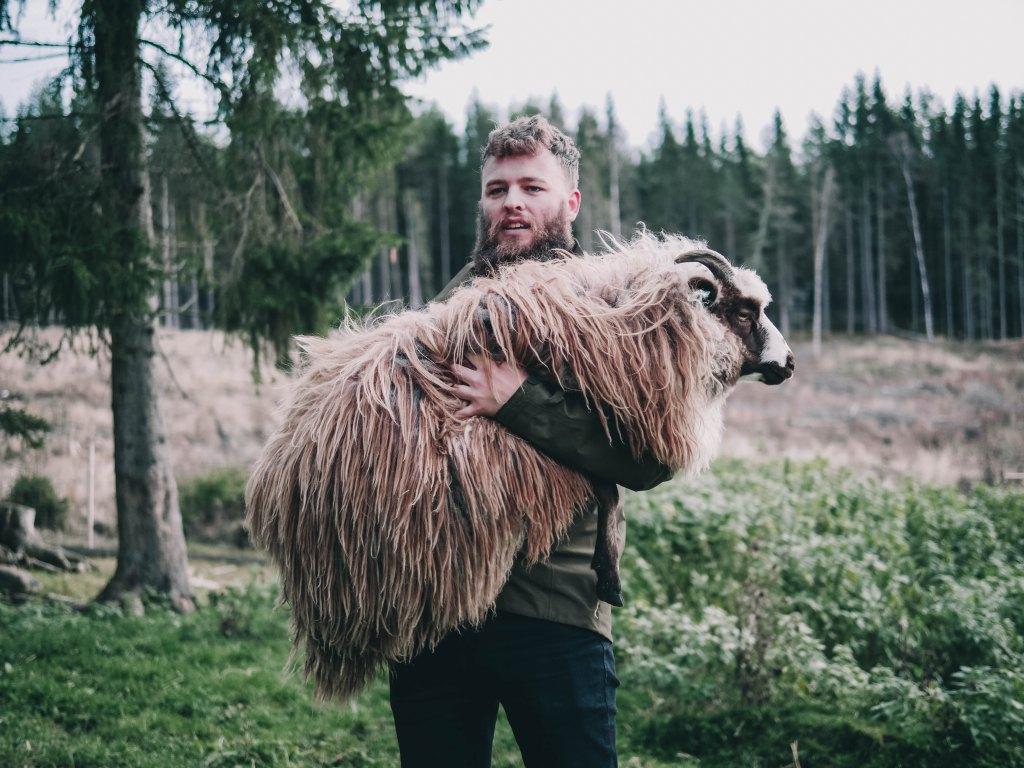 Man carrying a sheep