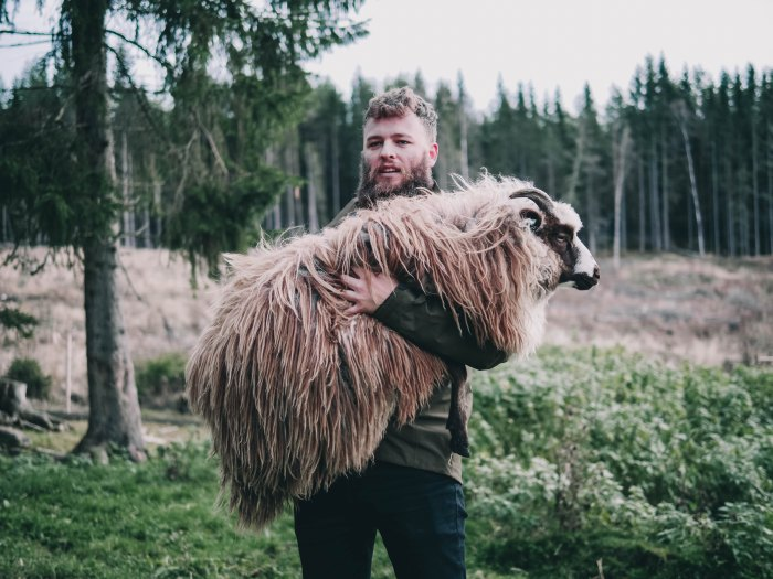 Man carrying a sheep