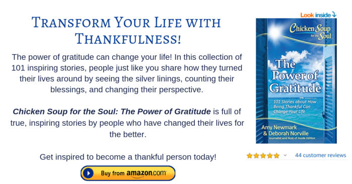 Chicken Soup for the Soul The Power of Gratitude (footnote).png
