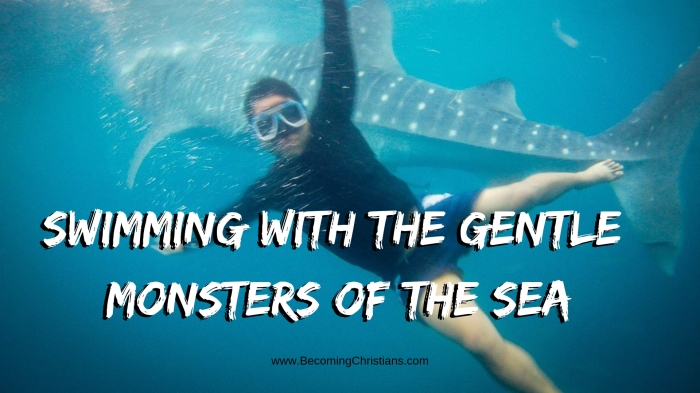Swimming with the Gentle Monsters of the Sea